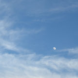 Blue sky. With moon in summer Stock Photos