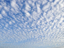 Blue sky with more cloud from morning time. With copy space Royalty Free Stock Photography