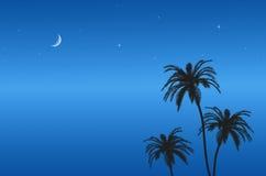 Blue sky at night. On the beach Stock Photo