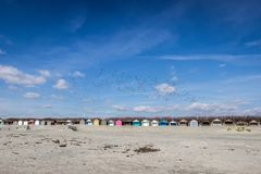 Painted beach huts on West Wittering Beach royalty free stock images