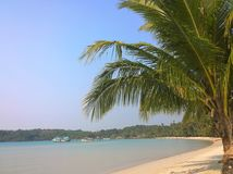 Blue sky over a beautiful tropical beach with green palm trees. Koh Kood Island , Thailand Stock Photography