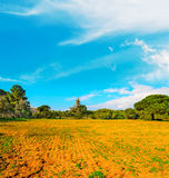 Blue sky over brown soil. And trees Stock Photo