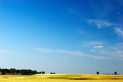 Blue sky over field Stock Images