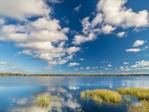 Blue sky over lake. Beautiful summers day at a small lake Royalty Free Stock Images