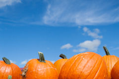 Blue Sky Over Pumpkins Royalty Free Stock Images