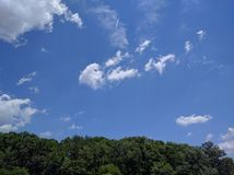 Blue sky. Over trees on a sunny day Royalty Free Stock Image