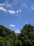 Blue sky. Over trees on a sunny day Stock Photo