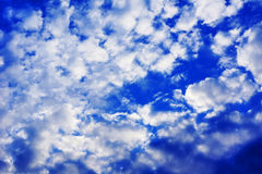 Blue sky and puffy white clouds. Blue sky with small puffy white clouds before sunset Stock Photo