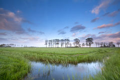 Blue sky reflected in river on meadows Stock Photos