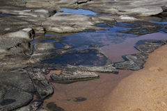 Blue Sky Reflected in Rock Pools at Seaside Royalty Free Stock Photo