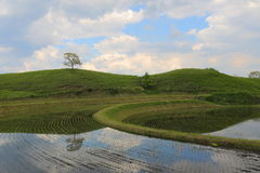 Blue sky and rice terrace Stock Photo