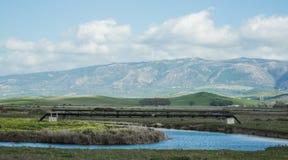 Blue sky river swamp beauty line Stock Image