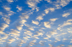 Blue Sky with Rows of White Clouds Stock Image