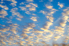 Blue Sky with Rows of White Clouds Royalty Free Stock Photo