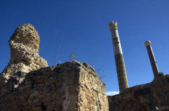 Blue sky and ruins in Carthage, Tunisia Royalty Free Stock Photo