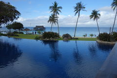 Blue sky, sea and swimming pool with towering coconut trees Royalty Free Stock Photos