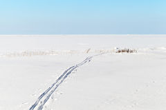 Blue sky, snow and Ski track on frozen sea Stock Photo