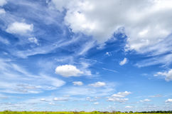 Blue sky in summer. Blue sky summer day in the wild countryside Royalty Free Stock Photo