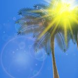 Blue sky with summer sun burst background. Stock Images