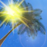Blue sky with summer sun burst background. Royalty Free Stock Images