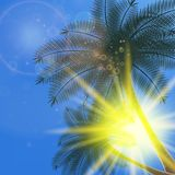 Blue sky with summer sun burst background. Stock Photo