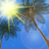 Blue sky with summer sun burst background. Stock Photography