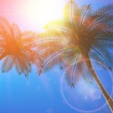 Blue sky with summer sun burst background. Stock Image