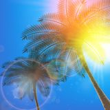 Blue sky with summer sun burst background. Royalty Free Stock Photography