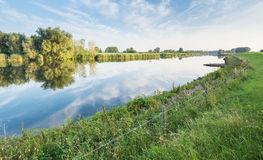 Blue sky and trees reflected in river Stock Photography