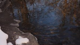A blue sky with trees reflected in a spring stream. With an edge of melting ice off shore stock video