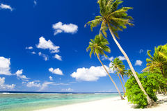 Blue Sky and Tropical Beach Destination Royalty Free Stock Images