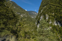 Blue sky between two mountains. Mountainside covered with trees Royalty Free Stock Photography