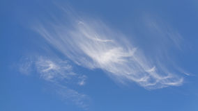 Blue sky with white cirrus clouds. Blue sky, white clouds background Royalty Free Stock Photos