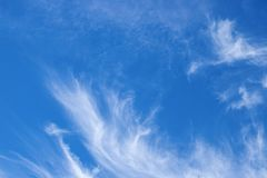 Blue sky with white cloud. Thin cirrus cloud on blue. Skyscape abstract photo. Optimistic sunny sky view stock image