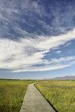 Blue sky,white cloud and winding road Stock Photos