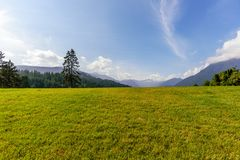 Blue sky with white clouds and field with green grass, forest an. Blue sky with white clouds and field with green grass in the foreground, forest and mountains Royalty Free Stock Images