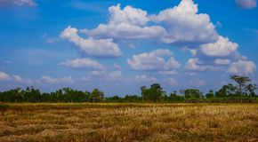 Blue sky and white clouds, fields after the harvest Royalty Free Stock Image