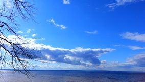 Blue sky with white clouds floating above the huge lake. Small waves on the lake. In the distance is the opposite shore. The noise of the water. Branches of a stock video footage
