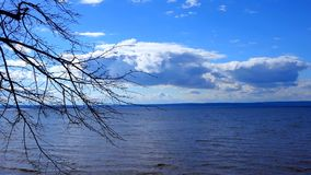 Blue sky with white clouds floating above the huge lake. Small waves on the lake. In the distance is the opposite shore. The noise of the water. Branches of a stock footage