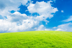 Blue sky and white clouds and grass Royalty Free Stock Image