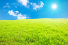 Blue sky and white clouds and grass Stock Image