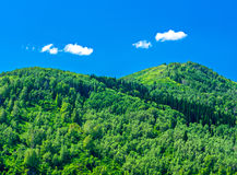 Blue sky, white clouds, green Altai Mountains at noon. Ridder, Kazakhstan Royalty Free Stock Image