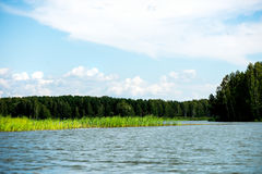 Blue Sky and White Clouds, Green Forest and Blue Waters of River Stock Image