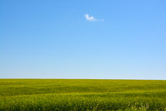 Blue sky with white clouds and green grass background on a summer day Stock Photo
