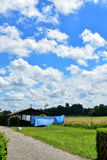Blue sky and white clouds over a green meadow on laundry day Stock Photo