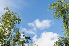 Blue sky white clouds with the sun Royalty Free Stock Image