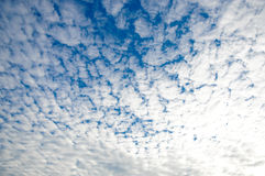 Blue sky with white clouds on sunset. Many little white clouds creating a tranquil weather pattern on the blue background. A clear cloudless day-time sky is blue Stock Photography