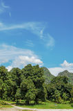 Blue Sky. & white clouds in thailand Royalty Free Stock Image