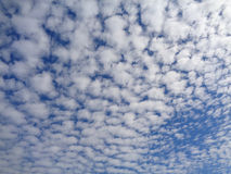 Blue sky with white cumulus clouds. Blue sky with a lot of white small clouds background Royalty Free Stock Images