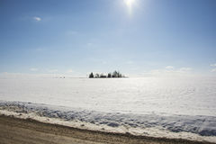 Blue sky and white field. At winter Stock Images